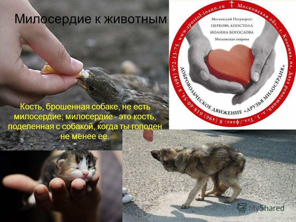 Милосердие к животным Кость, брошенная собаке, не есть милосердие; милосердие - это кость, поделенная с собакой, когда ты голоден не менее ее.