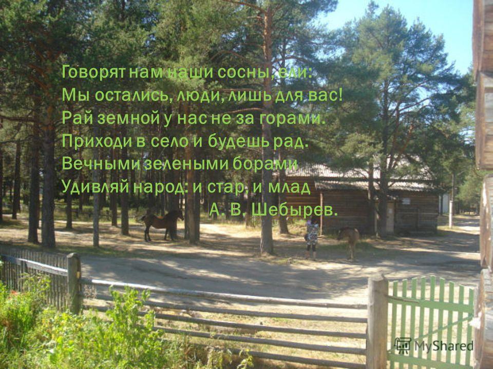 Говорят нам наши сосны, ели: Мы остались, люди, лишь для вас! Рай земной у нас не за горами. Приходи в село и будешь рад. Вечными зелеными борами Удивляй народ: и стар, и млад А. В. Шебырев.