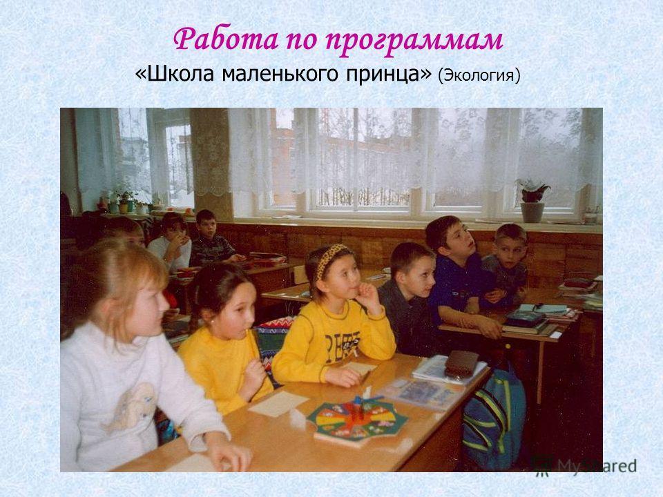 Работа по программам «Школа маленького принца» (Экология)