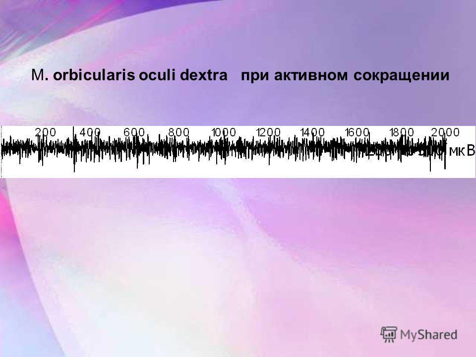 M. orbicularis oculi dextra при активном сокращении