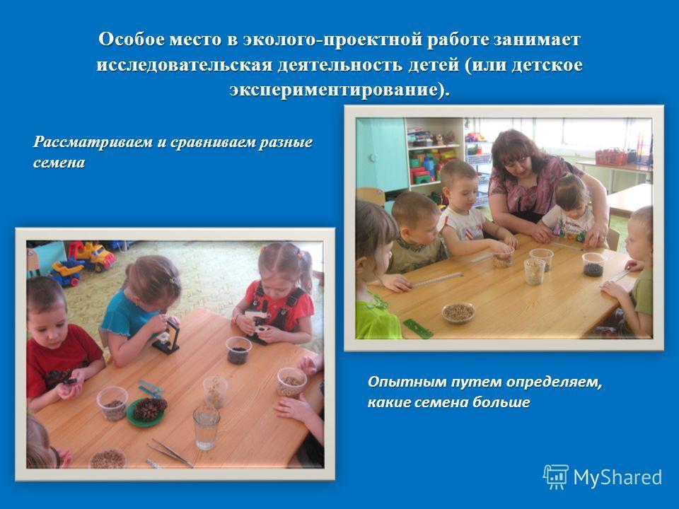 Особое место в эколого-проектной работе занимает исследовательская деятельность детей (или детское экспериментирование). Рассматриваем и сравниваем разные семена Опытным путем определяем, какие семена больше