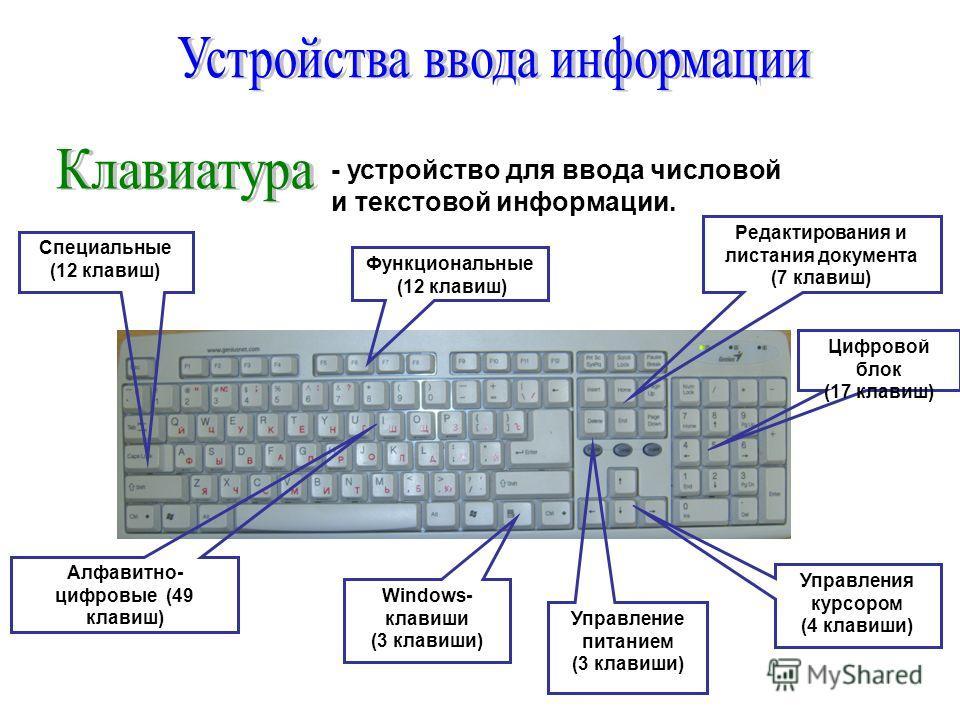 - устройство для ввода числовой и текстовой информации. Функциональные (12 клавиш) Windows- клавиши (3 клавиши) Управления курсором (4 клавиши) Алфавитно- цифровые (49 клавиш) Редактирования и листания документа (7 клавиш) Цифровой блок (17 клавиш) У