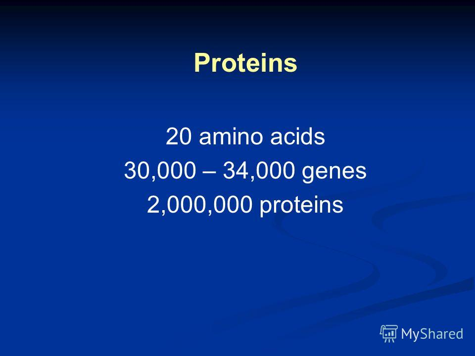 Proteins 20 amino acids 30,000 – 34,000 genes 2,000,000 proteins