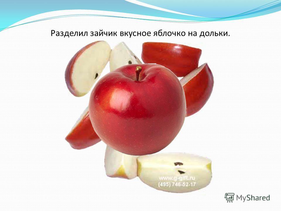 Разделил зайчик вкусное яблочко на дольки.