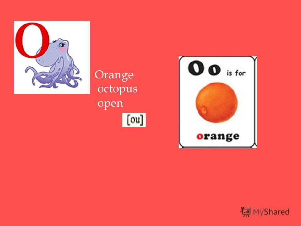 Orange octopus open