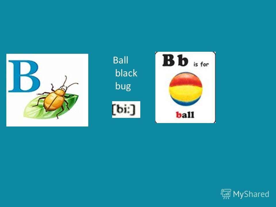Ball black bug