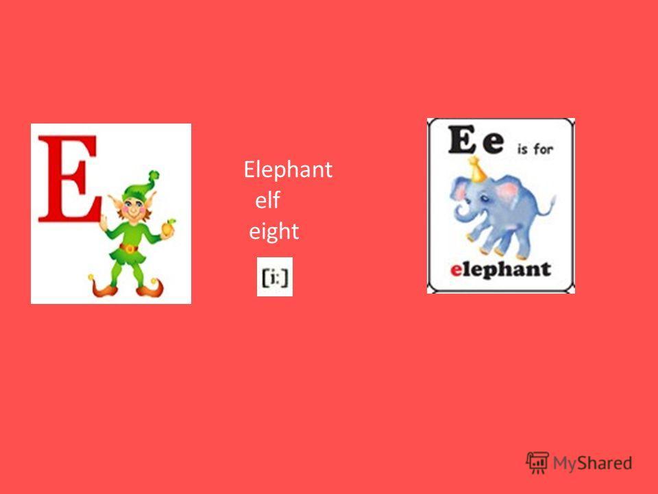Elephant elf eight