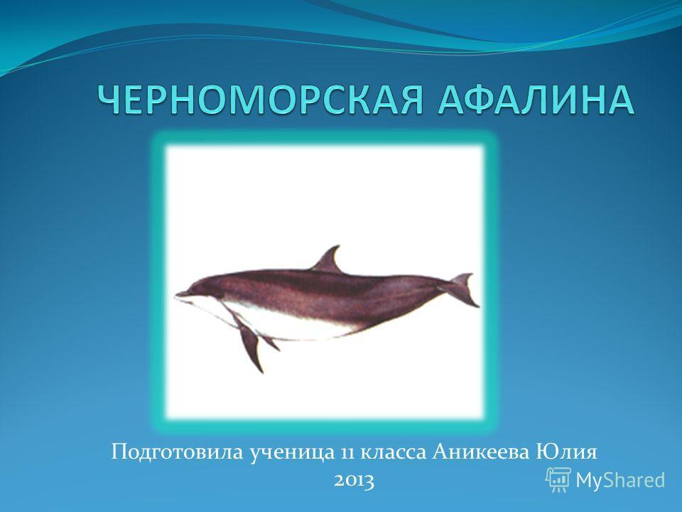 Подготовила ученица 11 класса Аникеева Юлия 2013