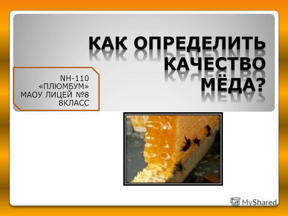 NH-110 «ПЛЮМБУМ» МАОУ ЛИЦЕЙ 8 8КЛАСС