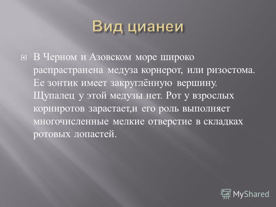 В Черном и Азовском море широко распрастранена медуза корнерот, или ризостома. Ее зонтик имеет закруглённую вершину. Щупалец у этой медузы нет. Рот у взрослых корниротов зарастает, и его роль выполняет многочисленные мелкие отверстие в складках ротов