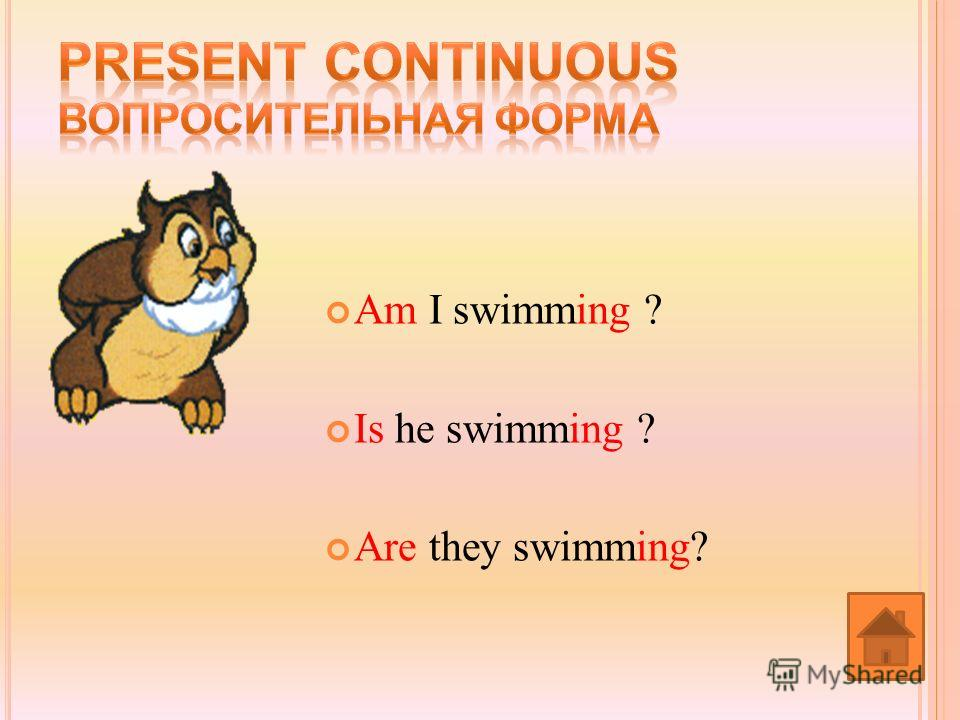 Am I swimming ? Is he swimming ? Are they swimming?