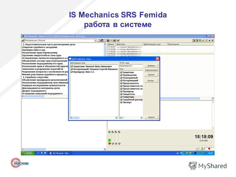 IS Mechanics SRS Femida работа в системе
