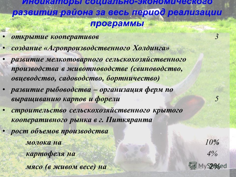 Индикаторы социально-экономического развития района за весь период реализации программы открытие кооперативов 3 создание «Агропроизводственного Холдинга» развитие мелкотоварного сельскохозяйственного производства в животноводстве (свиноводство, овцев