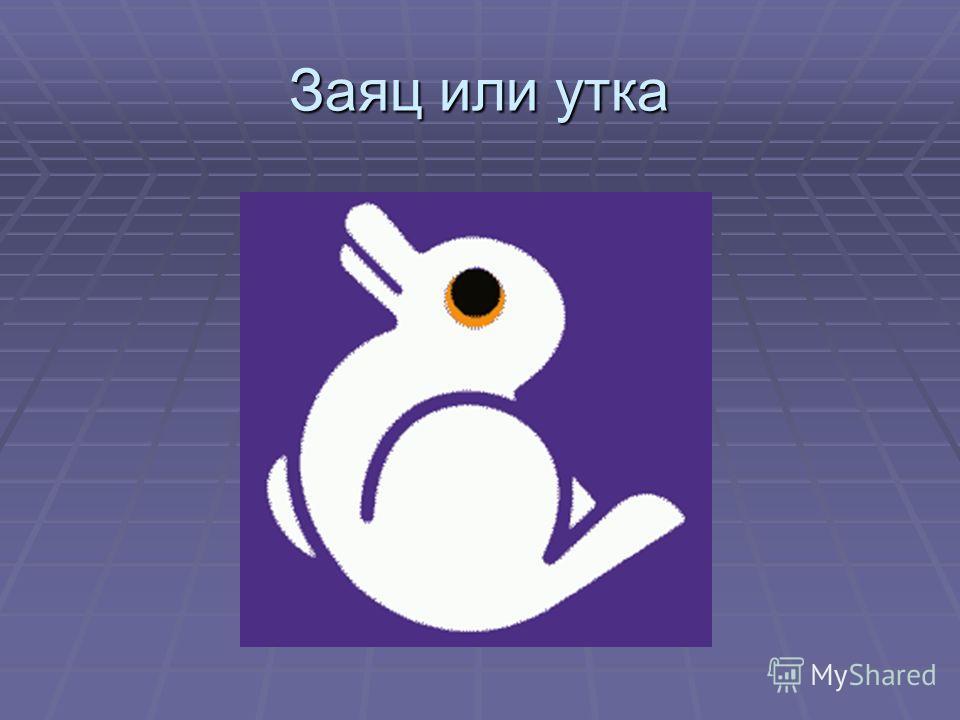 Заяц или утка