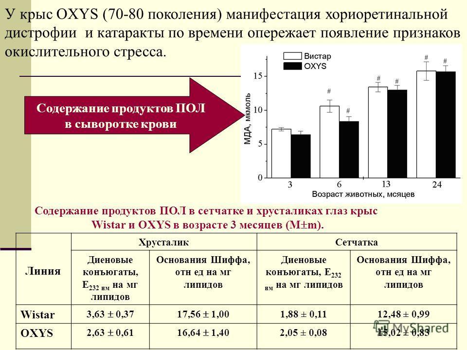 У крыс OXYS (70-80 поколения) манифестация хориоретинальной дистрофии и катаракты по времени опережает появление признаков окислительного стресса. Линия ХрусталикСетчатка Диеновые конъюгаты, Е 232 нм на мг липидов Основания Шиффа, отн ед на мг липидо