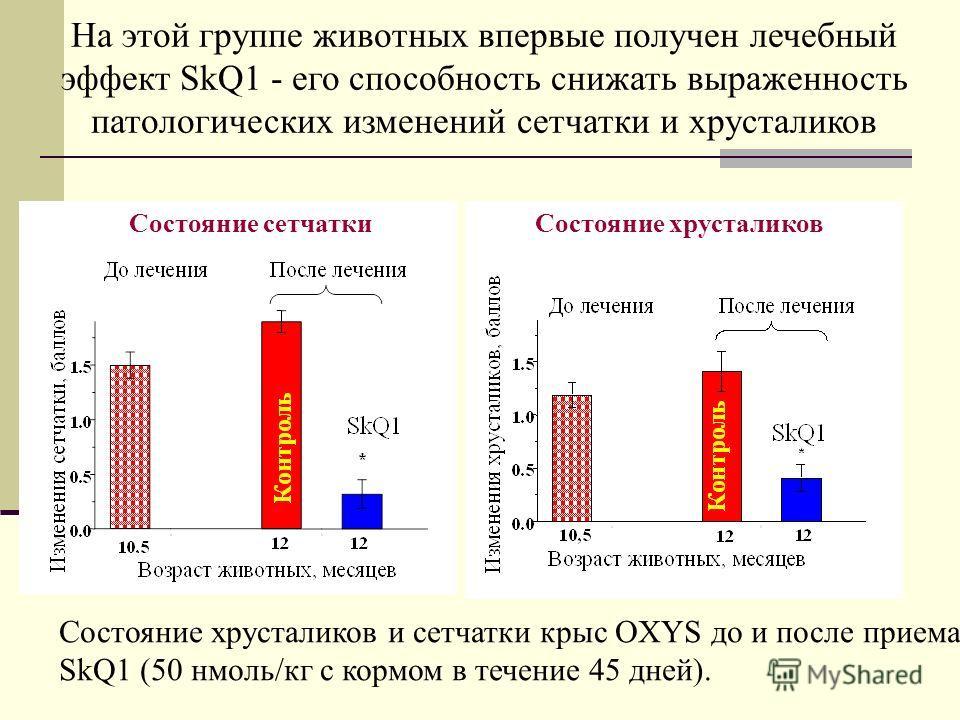Состояние хрусталиков и сетчатки крыс OXYS до и после приема SkQ1 (50 нмоль/кг с кормом в течение 45 дней). На этой группе животных впервые получен лечебный эффект SkQ1 - его способность снижать выраженность патологических изменений сетчатки и хруста
