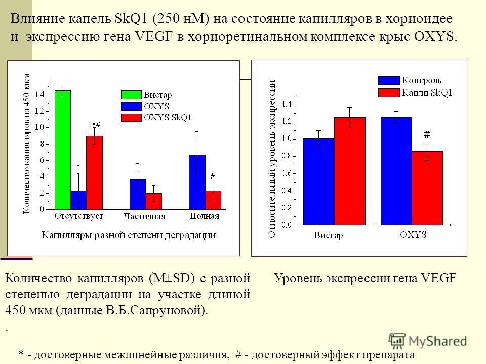 Количество капилляров (M±SD) с разной степенью деградации на участке длиной 450 мкм (данные В.Б.Сапруновой).. Влияние капель SkQ1 (250 нМ) на состояние капилляров в хориоидее и экспрессию гена VEGF в хориоретинальном комплексе крыс OXYS. * - достовер