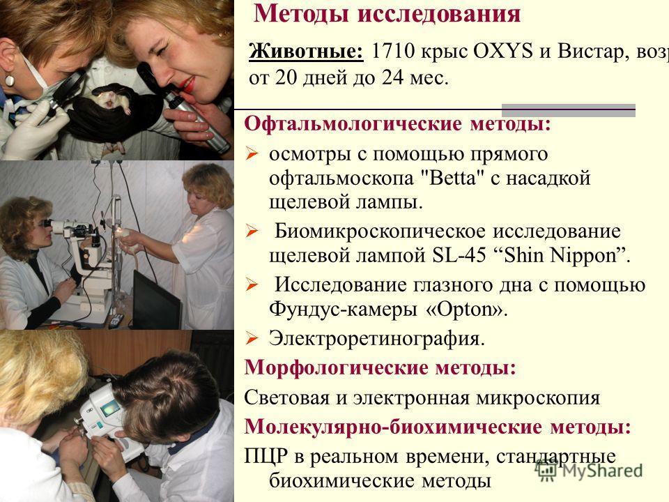 Методы исследования Офтальмологические методы: осмотры с помощью прямого офтальмоскопа
