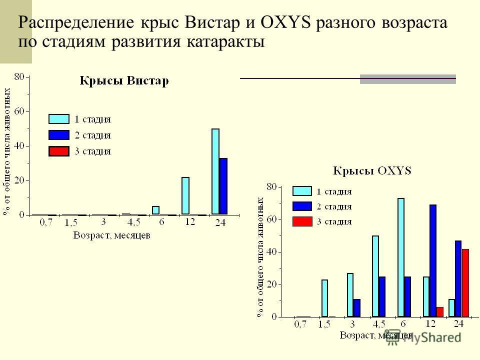 Распределение крыс Вистар и OXYS разного возраста по стадиям развития катаракты