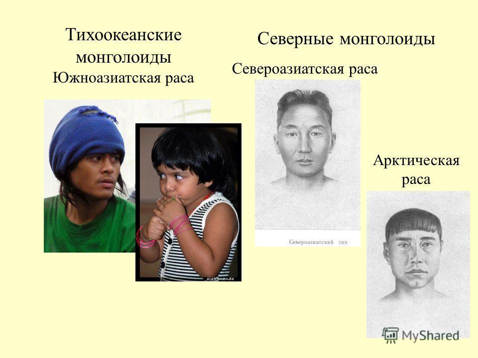Тихоокеанские монголоиды Южноазиатская раса Северные монголоиды Североазиатская раса Арктическая раса