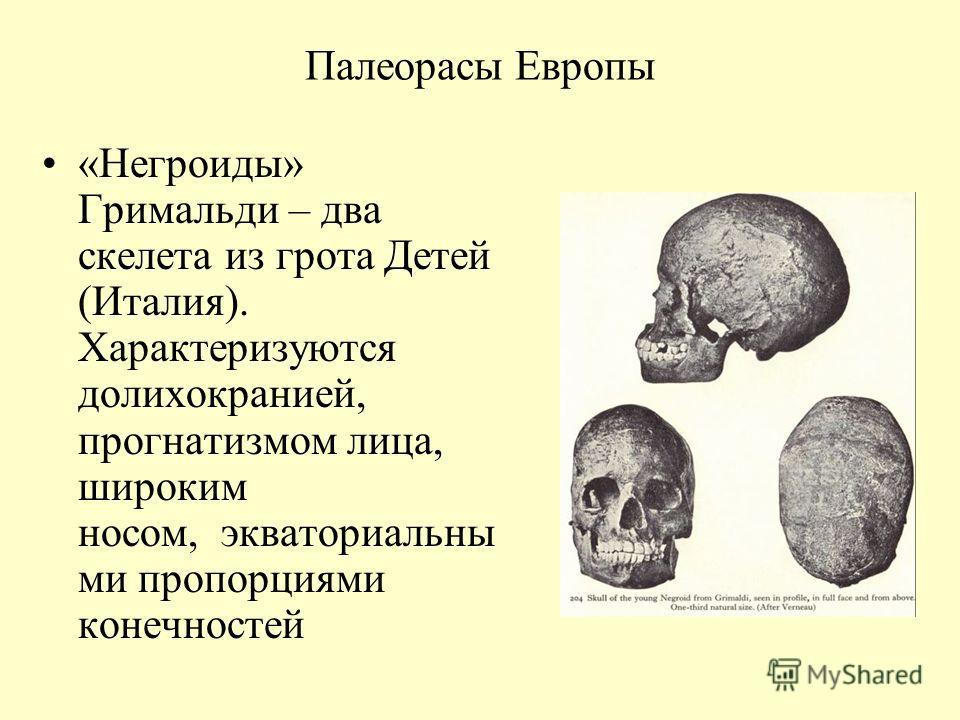 Палеорасы Европы «Негроиды» Гримальди – два скелета из грота Детей (Италия). Характеризуются долихокранией, прогнатизмом лица, широким носом, экваториальны ми пропорциями конечностей