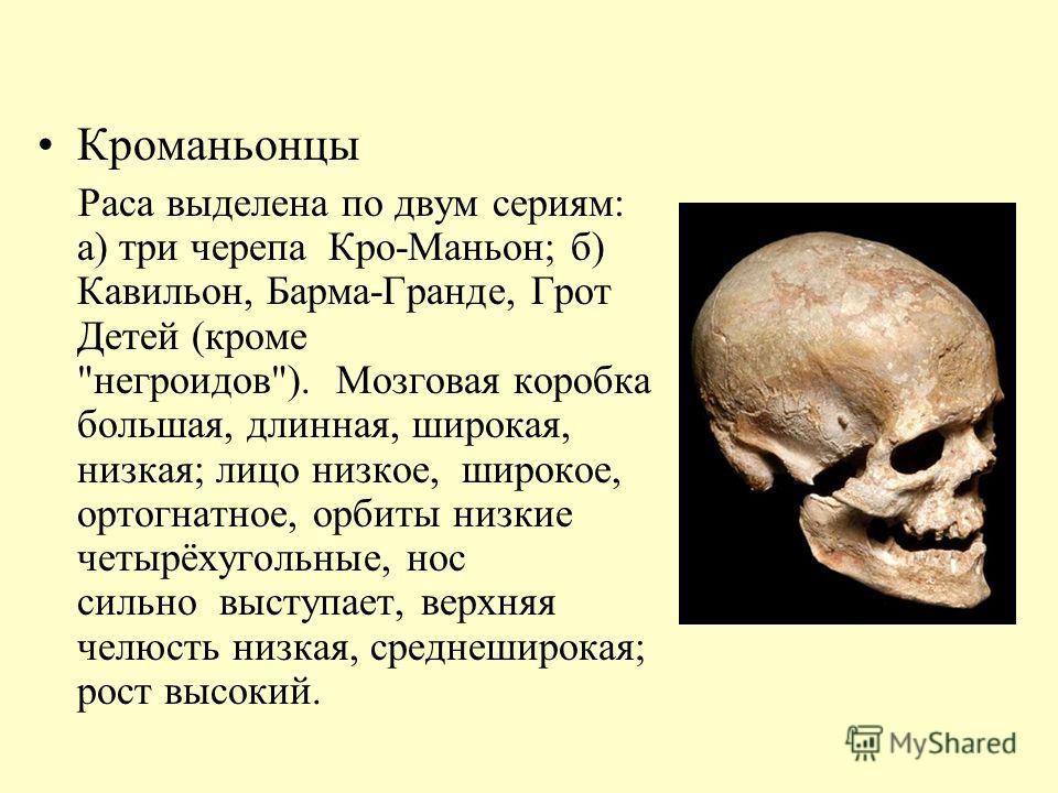 Кроманьонцы Раса выделена по двум сериям: а) три черепа Кро-Маньон; б) Кавильон, Барма-Гранде, Грот Детей (кроме