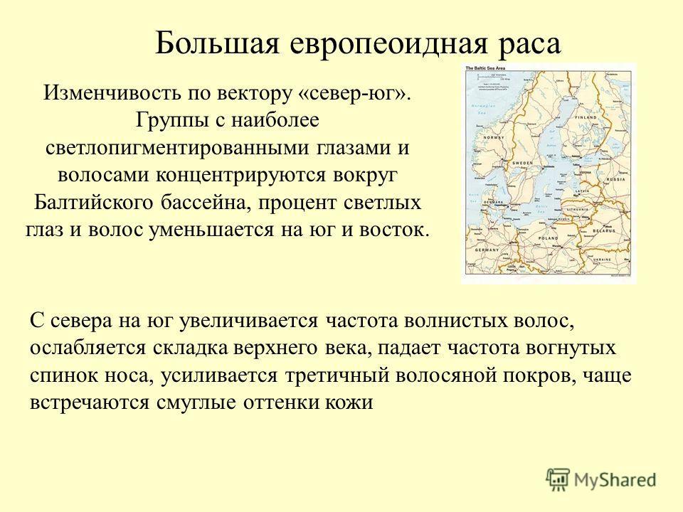 Большая европеоидная раса Изменчивость по вектору «север-юг». Группы с наиболее светлопигментированными глазами и волосами концентрируются вокруг Балтийского бассейна, процент светлых глаз и волос уменьшается на юг и восток. С севера на юг увеличивае