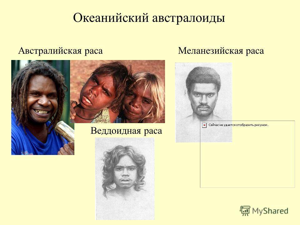 Океанийский австралоиды Австралийская расаМеланезийская раса Веддоидная раса