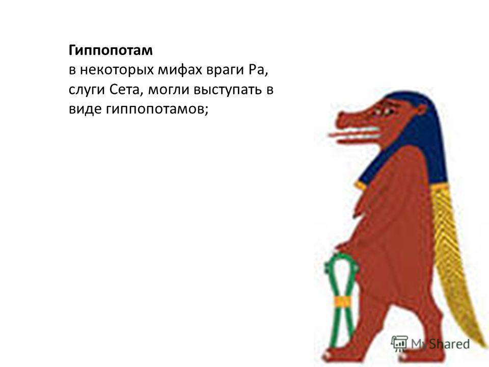 Гиппопотам в некоторых мифах враги Ра, слуги Сета, могли выступать в виде гиппопотамов;