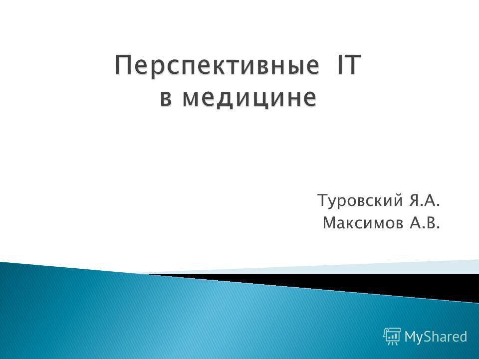 Туровский Я.А. Максимов А.В.