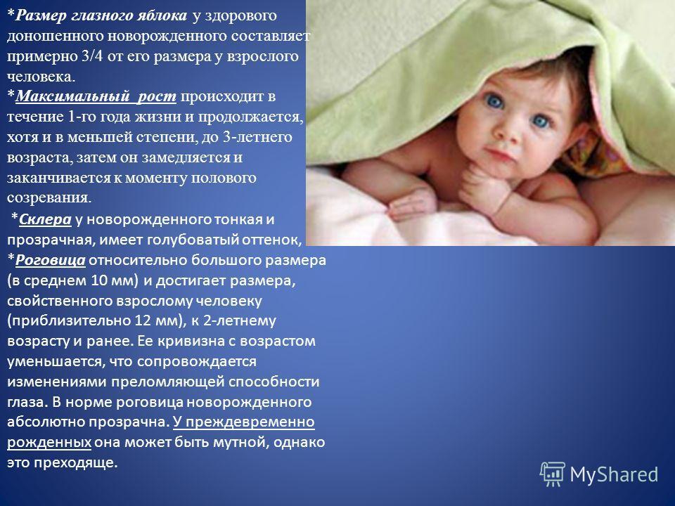 *Размер глазного яблока у здорового доношенного новорожденного составляет примерно 3/4 от его размера у взрослого человека. *Максимальный рост происходит в течение 1-го года жизни и продолжается, хотя и в меньшей степени, до 3-летнего возраста, затем