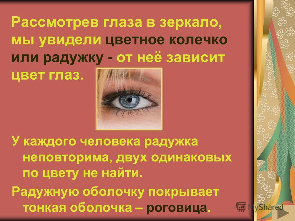Рассмотрев глаза в зеркало, мы увидели цветное колечко или радужку - от неё зависит цвет глаз. У каждого человека радужка неповторима, двух одинаковых по цвету не найти. Радужную оболочку покрывает тонкая оболочка – роговица.