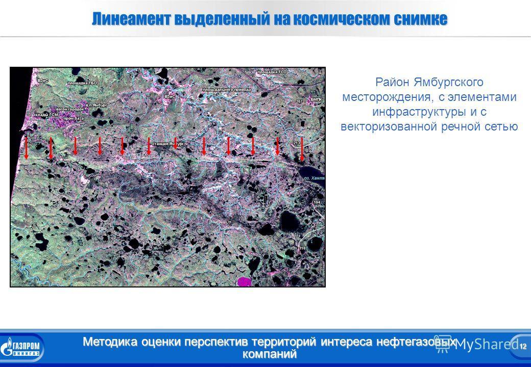 12 Методика оценки перспектив территорий интереса нефтегазовых компаний 12 Линеамент выделенный на космическом снимке а Район Ямбургского месторождения, с элементами инфраструктуры и с векторизованной речной сетью