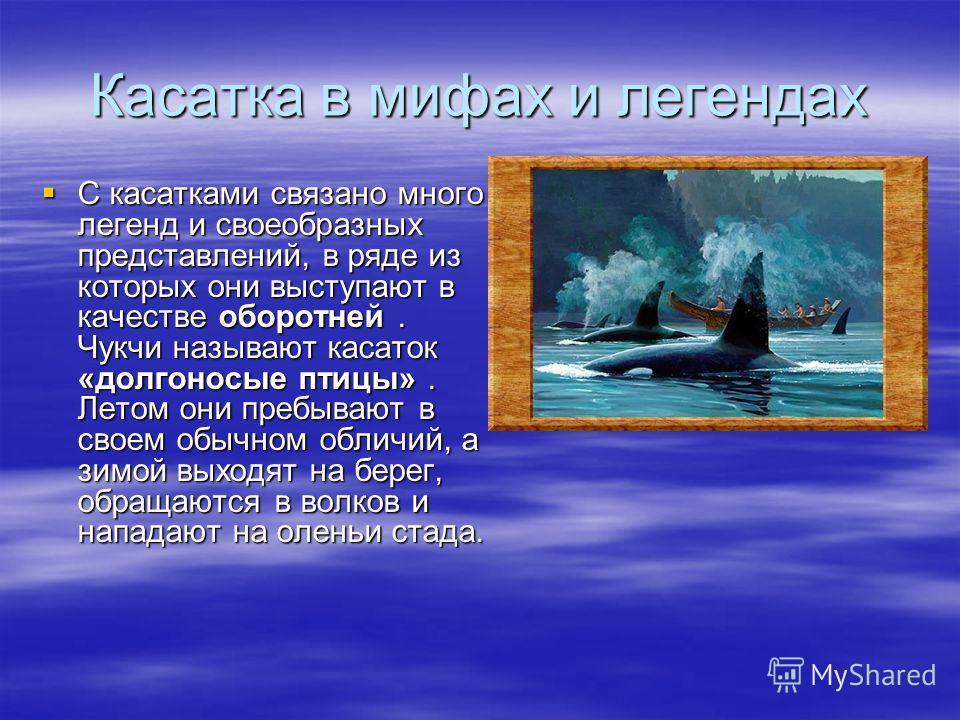 Монах и его спутники высадились на сушу, наскоро соорудили небольшой алтарь и отслужили благодарственный молебен. Немного отдохнув, они вновь сели на корабль и покинули необычный остров. Интересно, что кит, погруженный в глубокий сон, даже не почувст