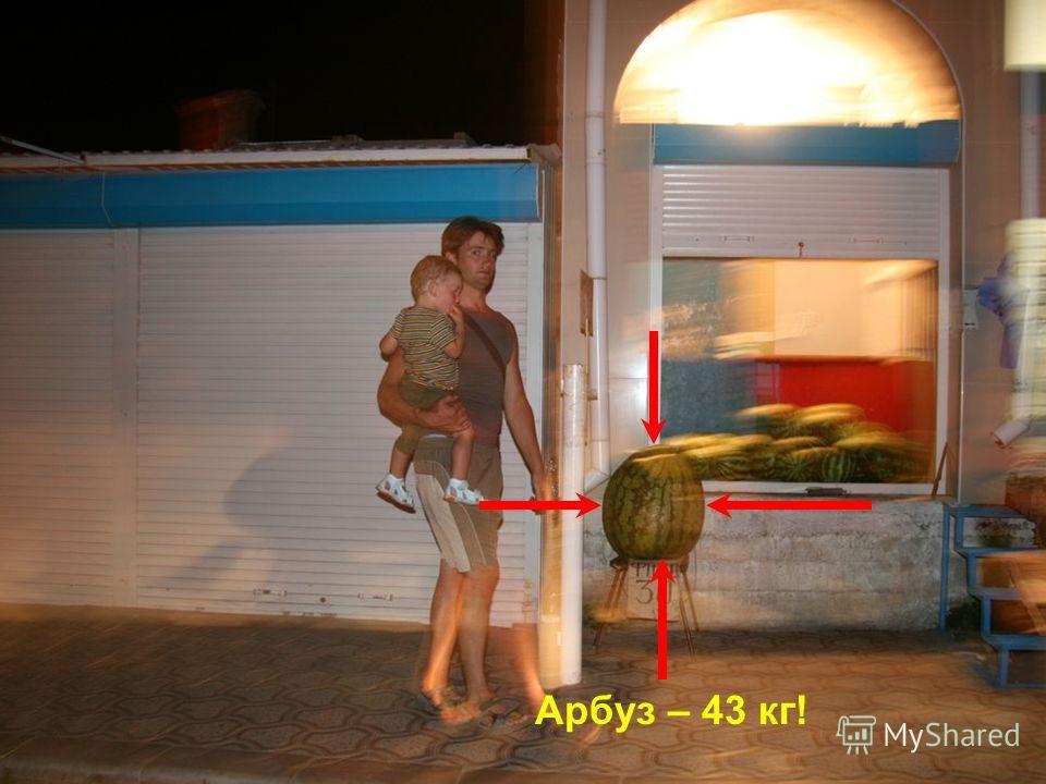 Арбуз – 43 кг!