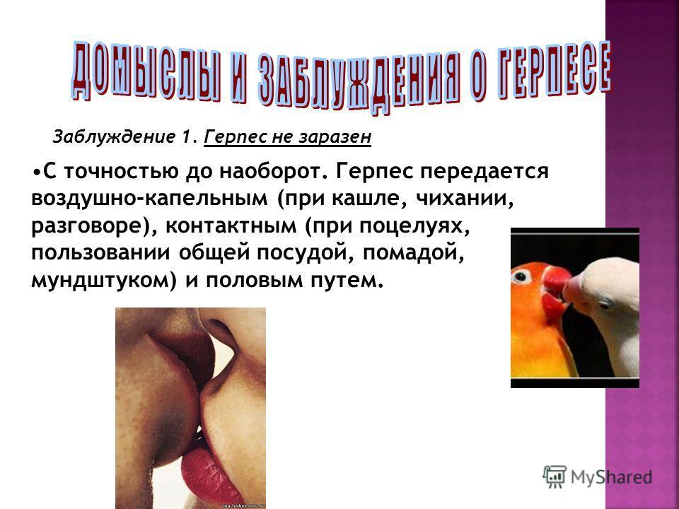 Заблуждение 1. Герпес не заразен С точностью до наоборот. Герпес передается воздушно-капельным (при кашле, чихании, разговоре), контактным (при поцелуях, пользовании общей посудой, помадой, мундштуком) и половым путем.