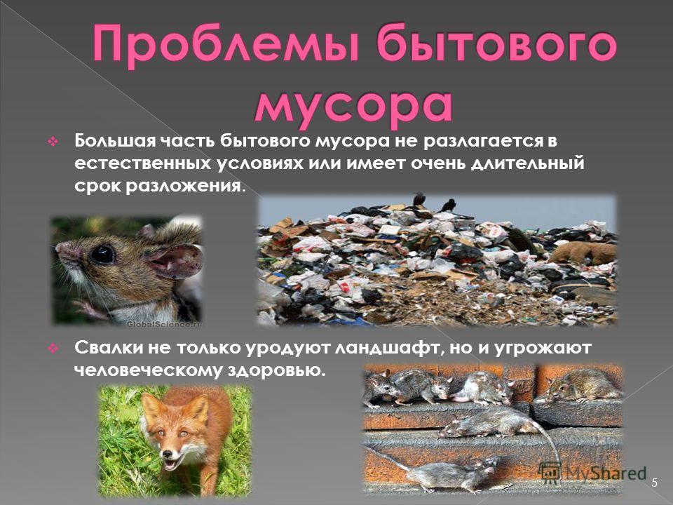 Большая часть бытового мусора не разлагается в естественных условиях или имеет очень длительный срок разложения. Свалки не только уродуют ландшафт, но и угрожают человеческому здоровью. 5
