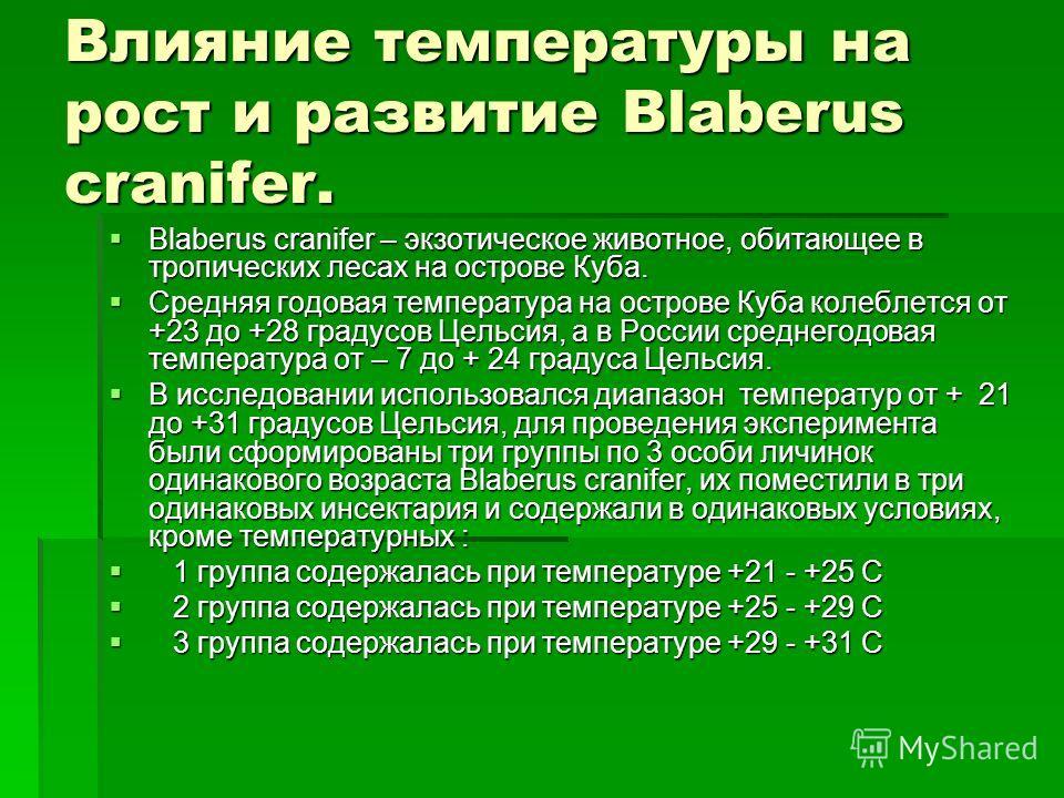 Влияние температуры на рост и развитие Blaberus cranifer. Blaberus cranifer – экзотическое животное, обитающее в тропических лесах на острове Куба. Blaberus cranifer – экзотическое животное, обитающее в тропических лесах на острове Куба. Средняя годо