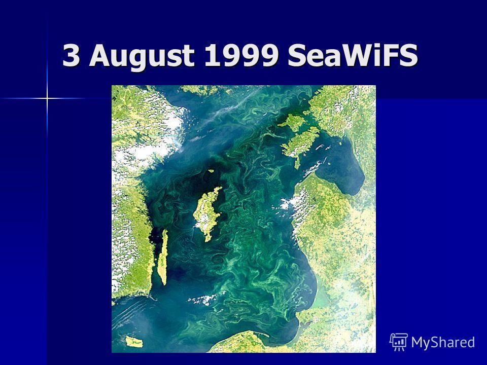 3 August 1999 SeaWiFS