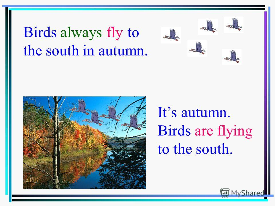 Birds always fly to the souse in autumn Birds always fly to the south in autumn. Its autumn. Birds are flying to the south.