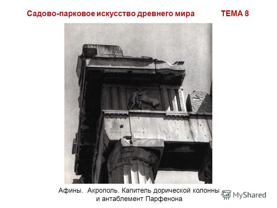 Садово-парковое искусство древнего мира ТЕМА 8 Афины. Акрополь. Капитель дорической колонны и антаблемент Парфенона