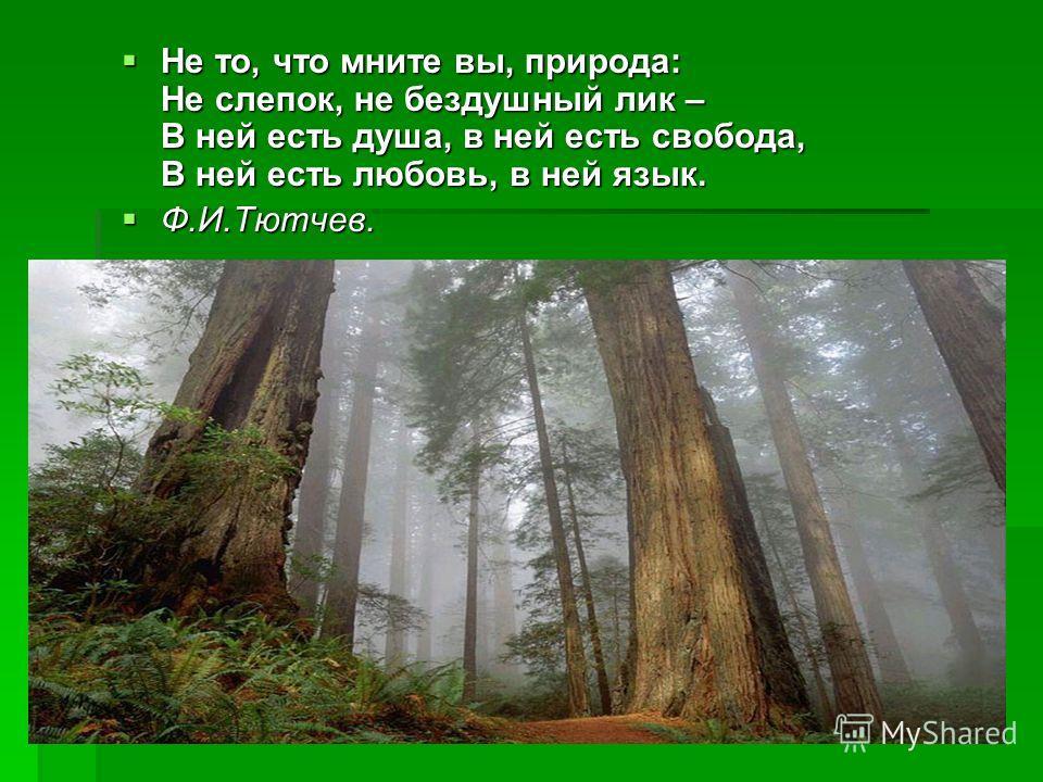 Не то, что мните вы, природа: Не слепок, не бездушный лик – В ней есть душа, в ней есть свобода, В ней есть любовь, в ней язык. Ф.И.Тютчев.