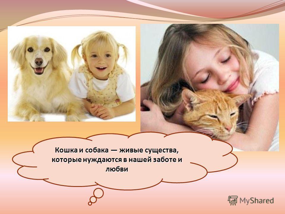 Кошка и собака живые существа, которые нуждаются в нашей заботе и любви