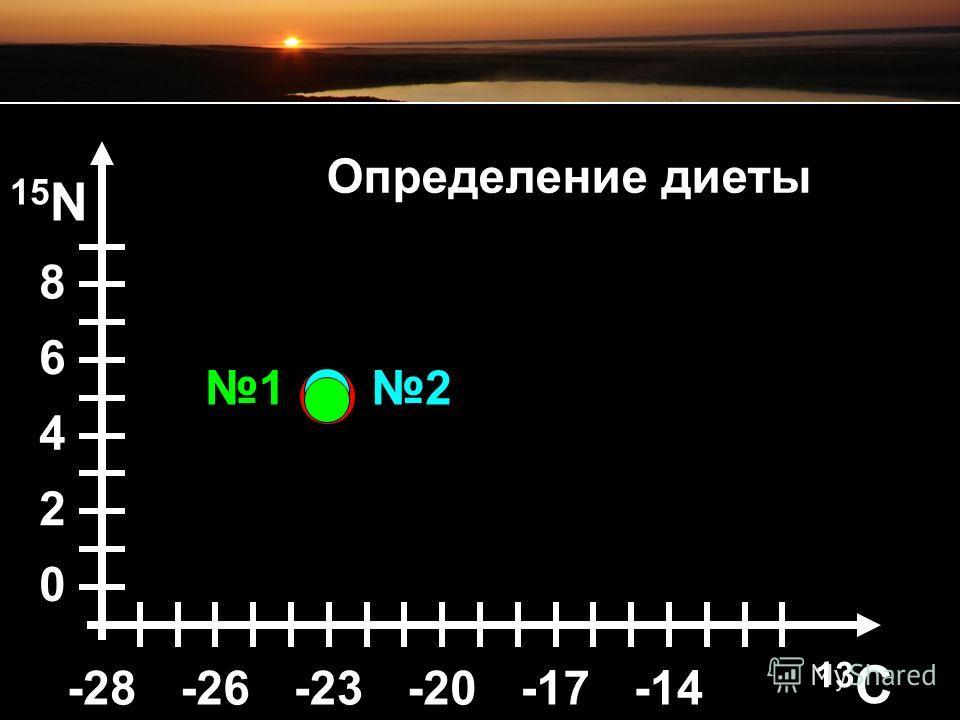 15 N 8 6 4 2 0 21 Определение диеты 13C13C -26-26-23-23-20-20-17-14-28-28