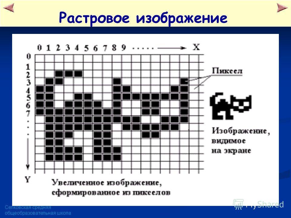 Селковская средняя общеобразовательная школа Растровое изображение