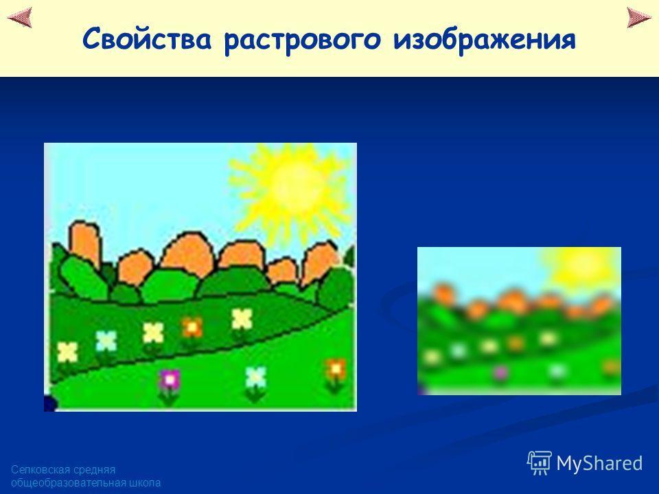 Селковская средняя общеобразовательная школа Свойства растрового изображения