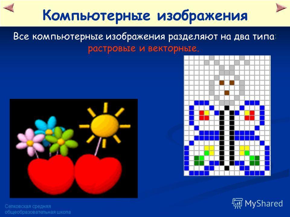 Селковская средняя общеобразовательная школа Все компьютерные изображения разделяют на два типа: растровые и векторные. Компьютерные изображения