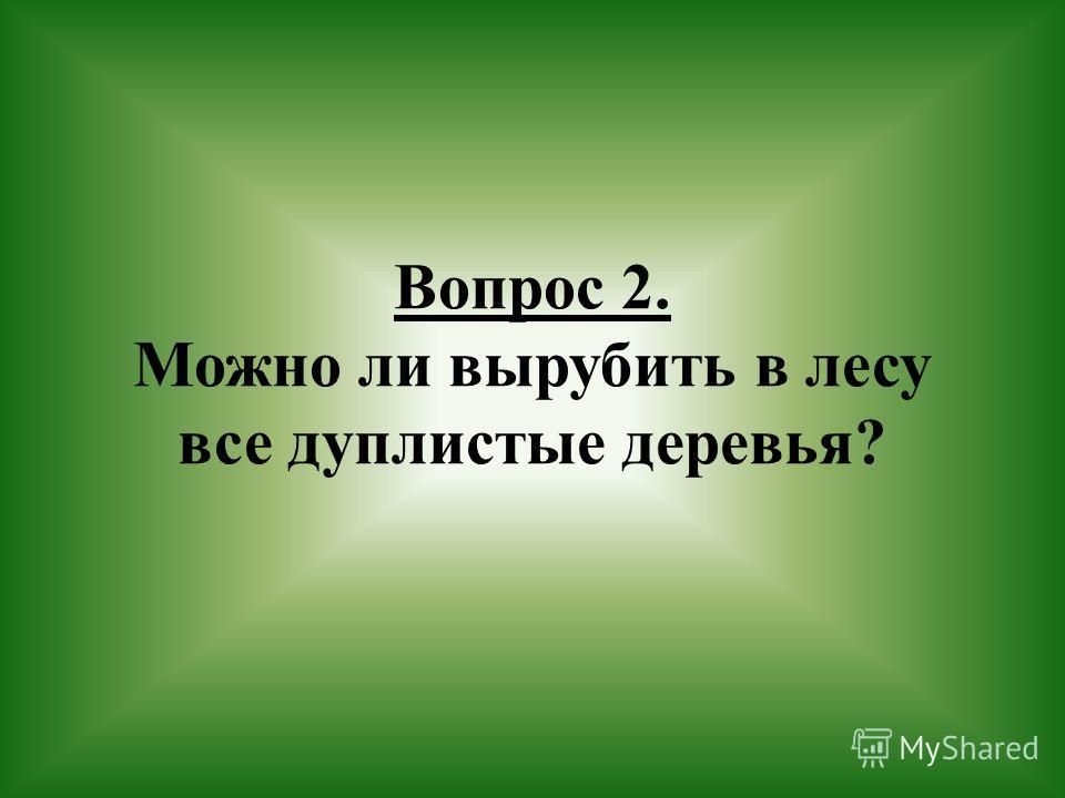 Вопрос 2. Можно ли вырубить в лесу все дуплистые деревья?