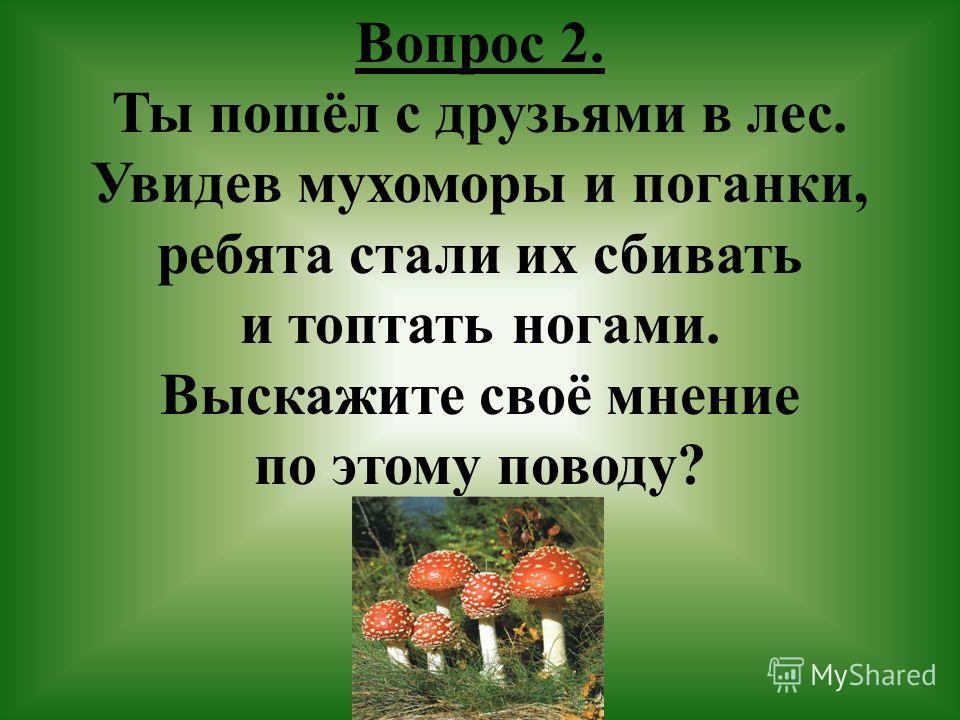 Вопрос 2. Ты пошёл с друзьями в лес. Увидев мухоморы и поганки, ребята стали их сбивать и топтать ногами. Выскажите своё мнение по этому поводу?