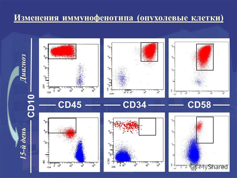 CD10 CD45 15-й день Диагноз CD34CD58 Изменения иммунофенотипа (опухолевые клетки)